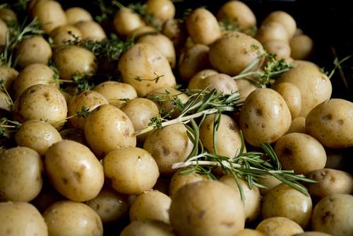 Roasted Potatoes With Lemon Olive Oil Emulsion
